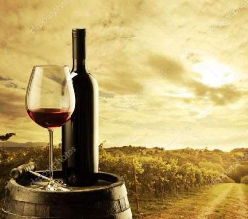 depositphotos_14820667-stock-photo-vineyard-at-sunset
