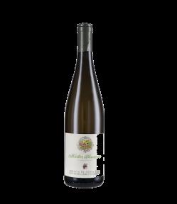 Muller Thurgau Alto Adige Doc 2018. Vino Bianco Trentino Alto Adige. Gradazione alcolica 12,5%.