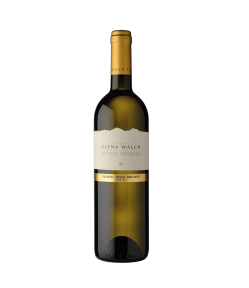 Muller Thurgau Alto Adige Doc 2019. Vino Bianco Trentino Alto Adige. Gradazione alcolica 12,5%.