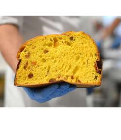 Il panettone tradizionale Rigacci, più volte premiato, è un inno alla morbidezza ed al gusto da mangiare a strappi come se fosse un'enorme brioche.